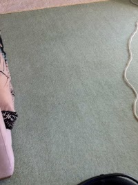Local Carpet and Upholstery Cleaning 350621 Image 2