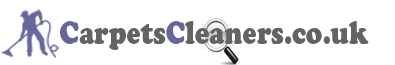 Carpet Cleaner Website Logo